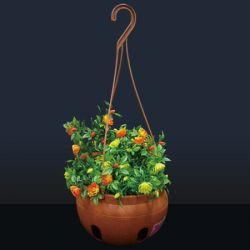 Flower Pot With Hook
