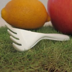 biodegradable forks, compostable forks